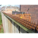 Fence Wall Spikes: Pack of 30 (13.5M to 40.5M) - BROWN
