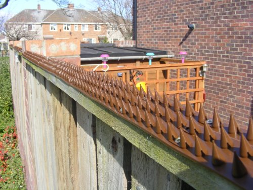 fence-wall-spikes-pack-of-20-90m-to-27m-brown