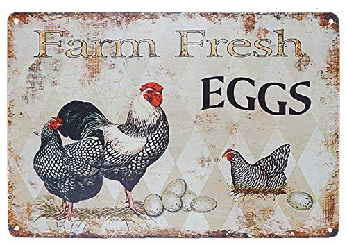 Sign Schild Huhn Hen Haus Schild Farm Fresh Eggs Country Schilder Wanddeko Retro Vintage Blech Tiere Yard Decor Geschenk Größe 30,5 x 30,5 cm