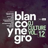 Blanco Y Negro Music: DJ Culture, Vol. 12