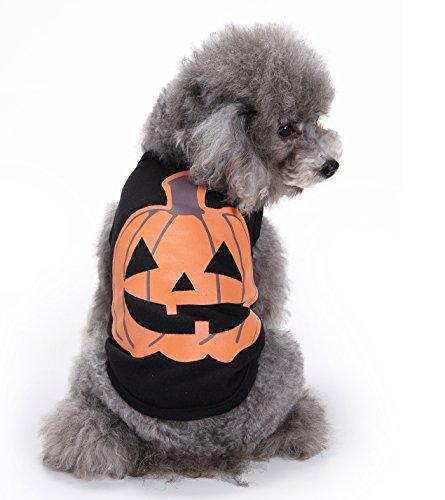 Hund Kleidung Halloween dress up Kürbis Weste, Youson Girl Pet Dog Cat Halloween Kostüm Kürbis Style Warm Angenehm Weiche Mantel (Schlechte Halloween Kostüme Bilder)