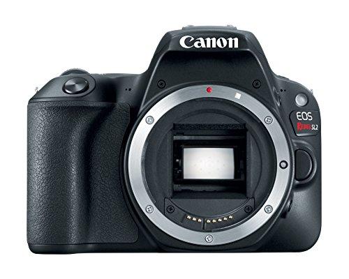 Canon EOS 200D Body Digital SLR Cameras