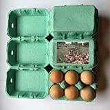 50 NEW EXTRA LARGE GREEN XL EGG BOXES FOR DUCK/CHICKEN EGGS