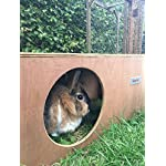 Hop Inn Rabbit Hide House (Sage) LARGE Indoor or Outdoor, Cat Hide, for Big Rabbits and Cats too, READY MADE and Built… 13