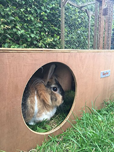 Hop Inn Rabbit Hide House (Sage) LARGE Indoor or Outdoor, Cat Hide, for Big Rabbits and Cats too, READY MADE and Built… 5
