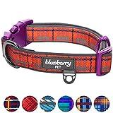 Blueberry Pet Halsbänder 2,5cm L Schottischer Traum Klassischer Karo Stil Designer Gepolstertes Hundehalsband