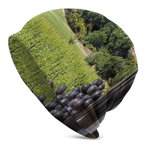 ORANGEW Top Level Beanie Men Women - Idyllic Tuscany Country Landscape Agriculture Harvest Grape Plantation - Unisex Cuffed Plain Skull Knit Hat Cap