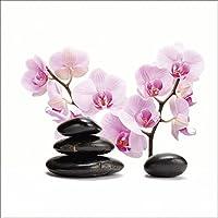 Suchergebnis Auf Amazon De Fur Wandtattoo Orchidee Baumarkt