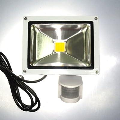 20 W LED Fluter Strahler PIR Bewegungsmelder KALTWEISS IP44 von Dyntronic GmbH auf Lampenhans.de