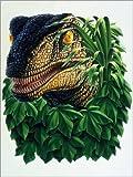 Posterlounge Forex-Platte 30 x 40 cm: Illustration, Dinosaurier, Kopf Still Life, Bild, Airbrush, Urzeit, Urtiere, Prähistorisch, Nachbi von Ace/Mauritius Images