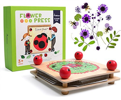 WISHTIME Flower Leaf Press Craft Kits Wooden Art Kit Outdoor Play Learning Toy for Children