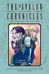 The Avalon Chronicles Volume 2 by Nunzio DeFilippis (2013-07-09)