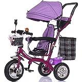 Carro per bambini della neonata della rotella della bolla, bici dei bambini, bicicletta, triciclo dei bambini, carrello leggero ( Colore : Viola )