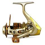 Gimitunus Salzwasser-Frischwasser-spinnende Angelrolle für Karpfen Pike Coarse Fishing (Größe : MR7000)