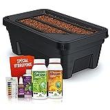 Easy Hydroponics - SEH250KIT - Mini garden 600 Kit complet pour la culture hydroponique - Noir 59 x 35 x 22 cm