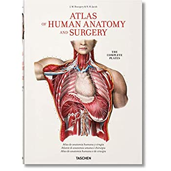 Atlas Of Human Anatomy And Surgery. Ediz. Multilingue