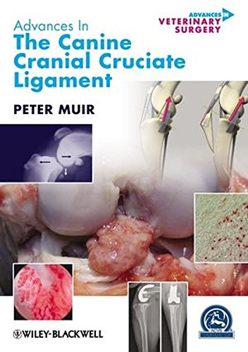 Advances in the Canine Cranial Cruciate Ligament (AVS Advances in Veterinary Surgery)