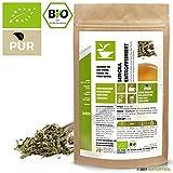 100 g China Sencha Entkoffeiniert Bio - im aromadichten & wiederverschließbaren Beutel - Natürlich Tee by Naturteil