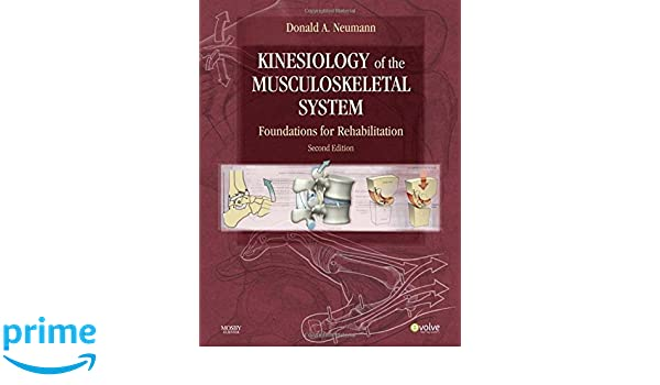 Kinesiology of the Musculoskeletal System: Amazon.de: Donald A ...