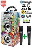 DYNASONIC - Altoparlante Bluetooth portatile con Karaoke modalità Eco 025-1 di 10W, 2 microfoni inclusi, Radio FM, Lettore USB e SD (Modello 1), compatibile con computer e telefoni, colore multicolor