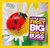 Little Kids First Big Book of Bugs (First Big Book)