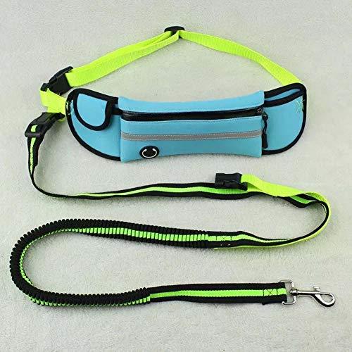 Hundehalsband, reflektierendes wasserdichtes laufendes Zugseil-Haustier-Leine-Seil passend für kleinen Hund Medium (Color : Water blue) -