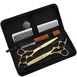 KDLD Friseurschere ®Haarschere Hairdressing Schere 6 Zoll / 17,3 cm Frisur Ausrüstung Haar Ausdünnung Schere und Box Gold/NWYJR