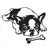 Autoaufkleber Französische Bulldogge Nr.7 25 x 20 cm (Schwarz)