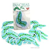 Pack of Pancreas Stickers I Heart Guts Giant Sticker Stickers Set by I Heart Guts