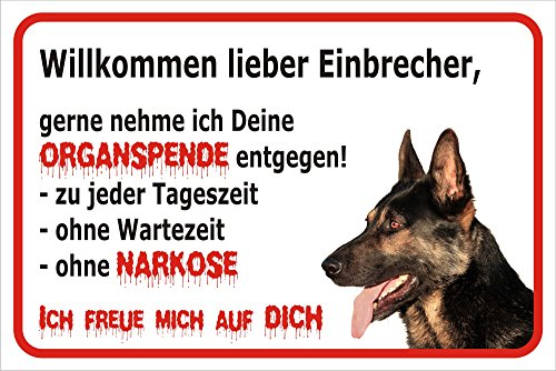 Schild Vorsicht Schäferhund - Willkommen lieber Einbrecher (20x30cm)