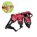 Aolvo Sicherheitsgurt, no-pull, atmungsaktiv, weich, Outdoor, Haustiere, verstellbar, 3 m Reflektierende Oxford-Material, für kleine mittlere große Hunde mit der Größe, rot, XL(Chest 26.8-41