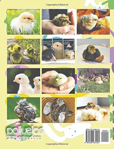 Polluelos 2018 Calendario (Edición España)