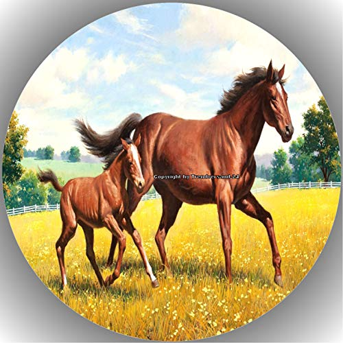 Premium Esspapier Tortenaufleger Pferd/Pferde T8