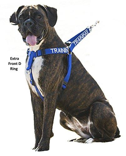 ABRICHTUNG Training Blau Farbkodiertes Nylon Nicht Ziehen Vorderseite Rückseite Ring Große L-XL-Hundegeschirr  (Bitte nicht stören) verhindert Unfälle durch Warnung Sonstige Ihren Hund im Voraus - 2