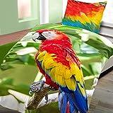 2tlg Baumwoll Bettwäsche 135x200cm+80x80cm großer bunter Papagei aufwendiger Premiumdruck 3D Garnitur NEU mit RV