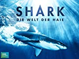 Shark [OV] Amazon Video
