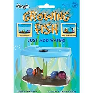 Tobar Growing Fish Toy