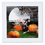 3dRose QS 26464_ 1Happy Halloween Fee Hexe