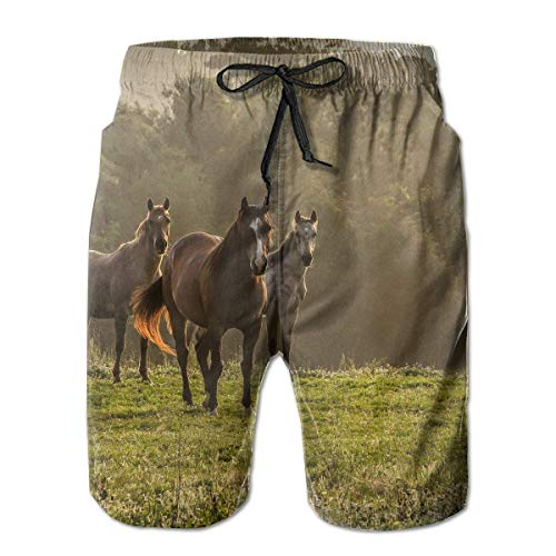 ZKHTO Horses Grass Herd Walk Trees Fog Mens Summer Swim Trunks 3D Graphic Quick Dry Funny Beach Board Shorts with Mesh Lining(XXL)