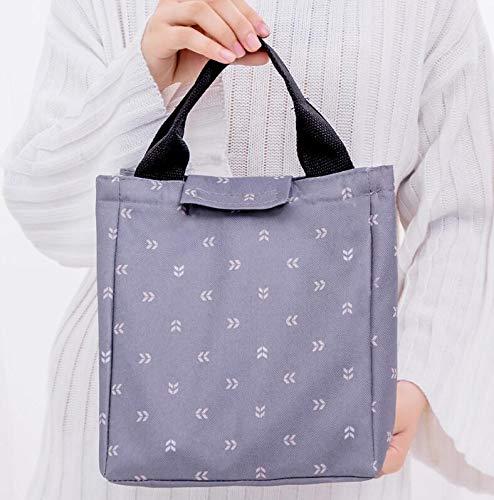 WWUUOOPRT Schule Picknick Tasche Take-out isolierte Oxford Tuch Gefrierschrank Lunch Bag (hellgrau) (Gefrierschrank Tuch)