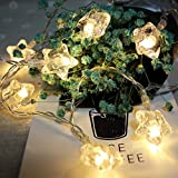 Y-XM Lichterkette mit 20 LED 3m Dreidimensional Sterne Lichterketten Zum Innen Draussen Weihnachten Hochzeit Dekor