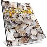 3 Jahres Journal: Ca. A4-Format, 190+ Seiten, Vintage Softcover • Dicker Jahreskalender, Tagebuch für Erwachsene, Kalenderbuch • ArtNr. 19 Muscheln • Ideal als Geschenk