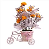 #4: JaipurCrafts Premium New Arrival Forever Collection Cycle shape Flower Vase with Mix Flowers Bunches