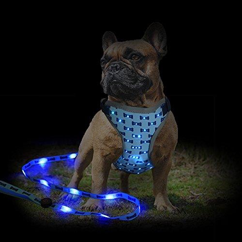 Namsan LED Hundegeschirr mit LED Hundeleine, Sicherheit Einstellbar Brustgeschirre für Hunde Laufende Outdoor-Aktivitäten (Blau)