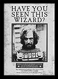 Wizarding World Harry Potter Affiche encadrée Recherche de Sirius 30 x 40cm [en Langue étrangère]