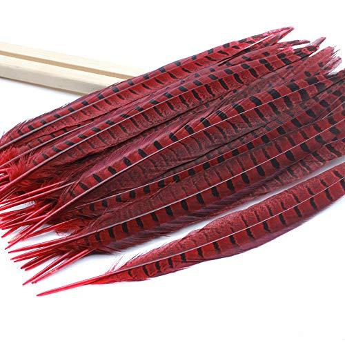 BLEVET 20 STK Fasanenfedern 40-45cm Fasan Feder Fasan Schwanzfedern Natur Echte Fasanenfedern MZ080 (Red, ()