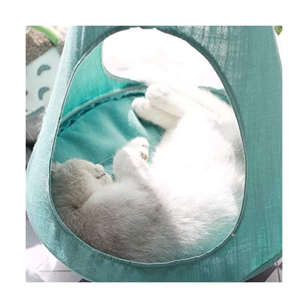 Cat Hammock, Window Sill Hanging Cat Bed Pet Cat Nest, Pet Hammock Hanging Seat, Save Space, Suitable for Household Detachable and Washable,B SJY Durable and Comfortable - According to the cat's favorite, our cat hammock is made of safe, non-toxic, scratch-resistant, bite and elastic materials. It won't hurt your cat, it suits all seasons, providing comfort and safety for your cat to sleep in the warm sun. Intimate Design - The cat hammock gives your cat a high position. Sleep leisurely on top, enjoy the sun, the weather and the natural landscape, a wonderful day! Even in winter, the warm bed will be perfect. Space Saving - The cat hammock provides a safe and comfortable sun hammock seat for your cat. Your cat can jump into this rest seat. The cat bed remains stable, which will save you the position and provide your cat with a safe and comfortable hammock . 6