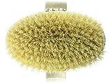 Hydrea London, Spazzola in con setole in fibra di cactus, per spazzolatura a secco