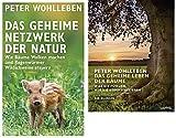 Das geheime Netzwerk der Natur u Das geheime Leben der Bäume Der Bildband