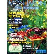 MON JARDIN MA MAISON [No 450] du 01/07/1997 - 30 PLANTES DE PLEIN SOLEIL - DECORS EXPRESS AVEC LES POTEES - GUIDE NATURE EN VENDEE - CULTUVEZ LES MEILLEURS FRUITS ROUGES - UNE BALADE EN BOURGOGNE - DALLAGES ET TRAVAUX D'ETE
